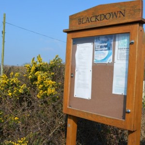 blackdown - Broadwindsor Group Parish Council